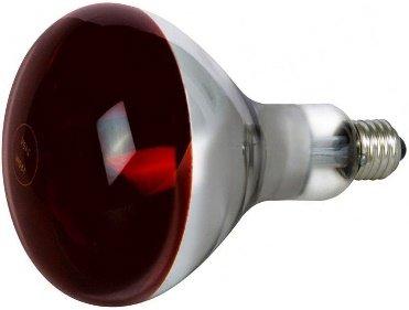 İnfraruj Ampul 250W